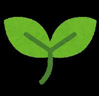 simple_leaf3[1]